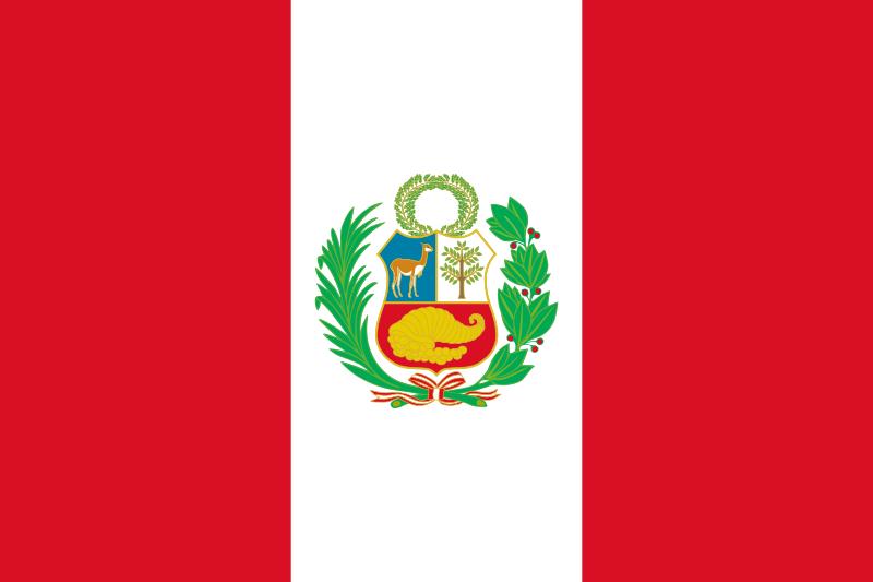 Asociación Peruana de Terapia Física - Aspetefi